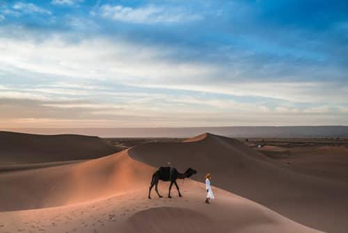 Business development visit to Saudi Arabia